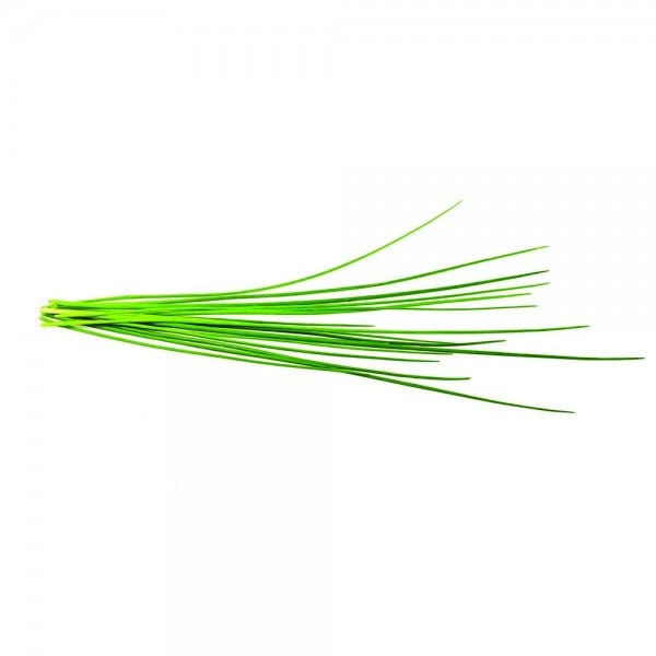 Chives Plant Pods
